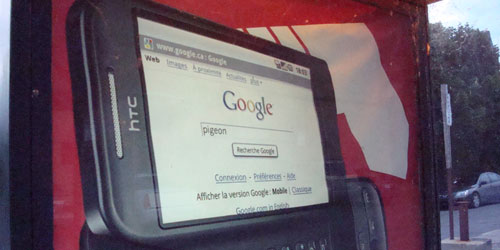 googlePigeon